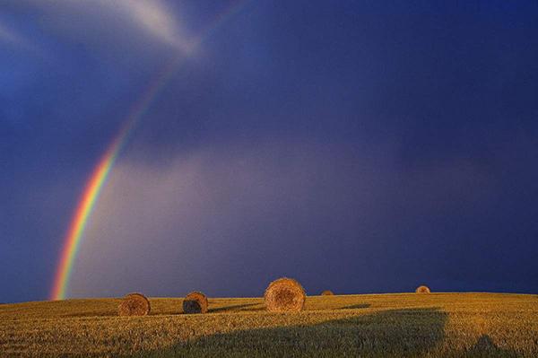 风雨之后,是彩虹吗?